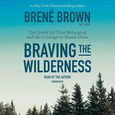 کتاب صوتی انگلیسی شجاعت در برهوت