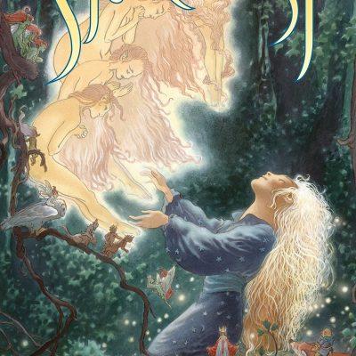 Neil Gaiman - Stardust le mystere de l'etoile BookZyfa