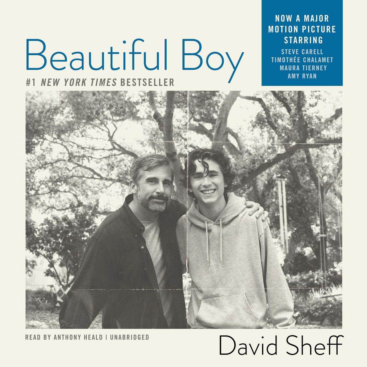 David Sheff - Beautiful Boy BookZyfa