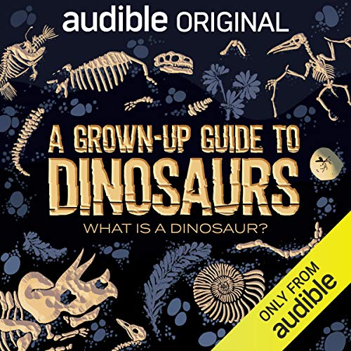 A Grown-Up Guide to Dinosaurs BookZyfa