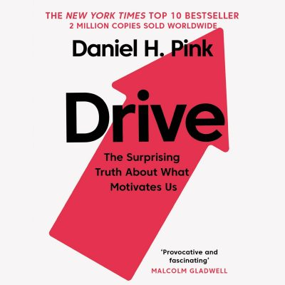 Daniel H. Pink - Drive BookZyfa